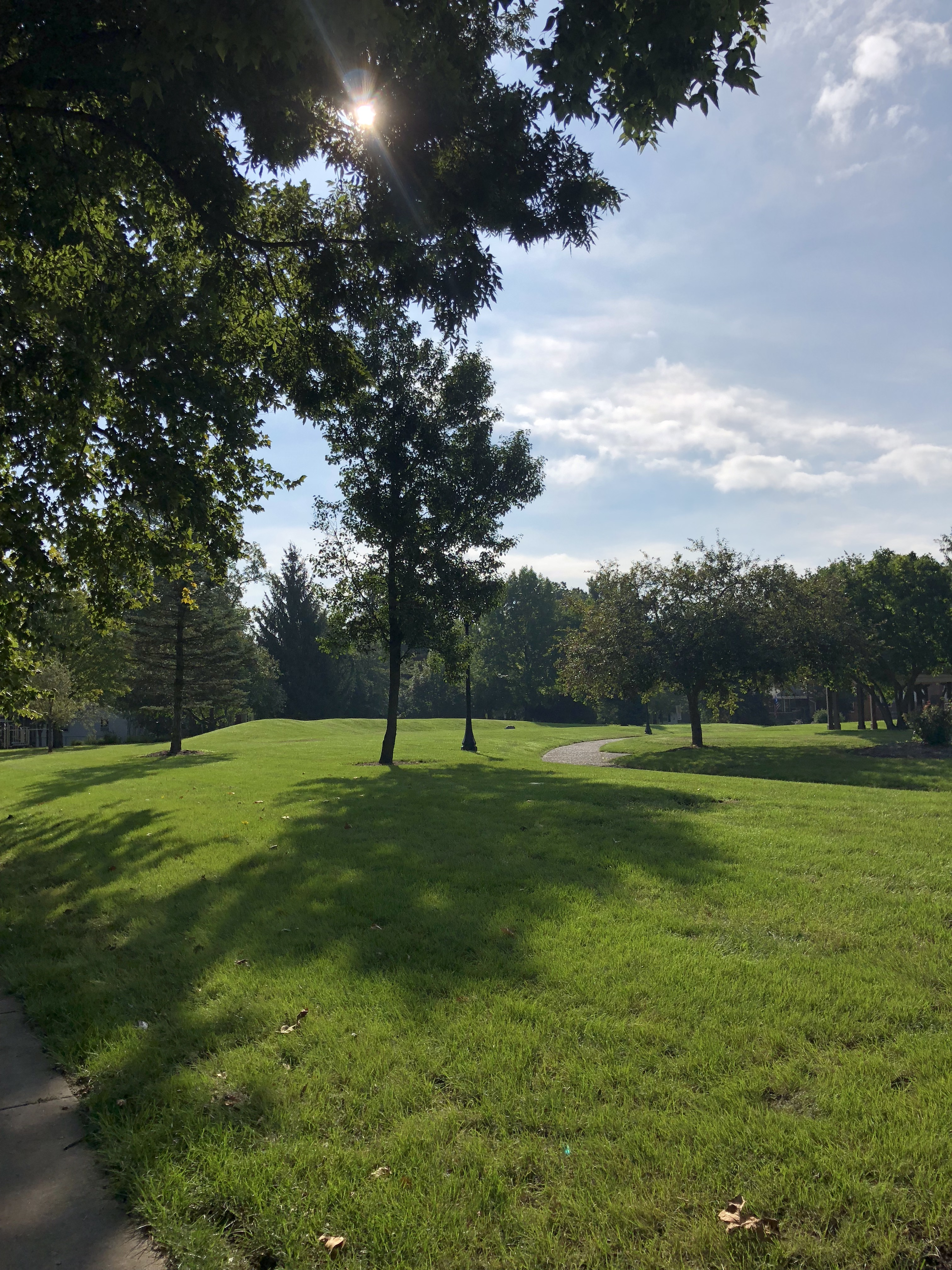 a picture of a green, grassy knoll in Noblesville, IN